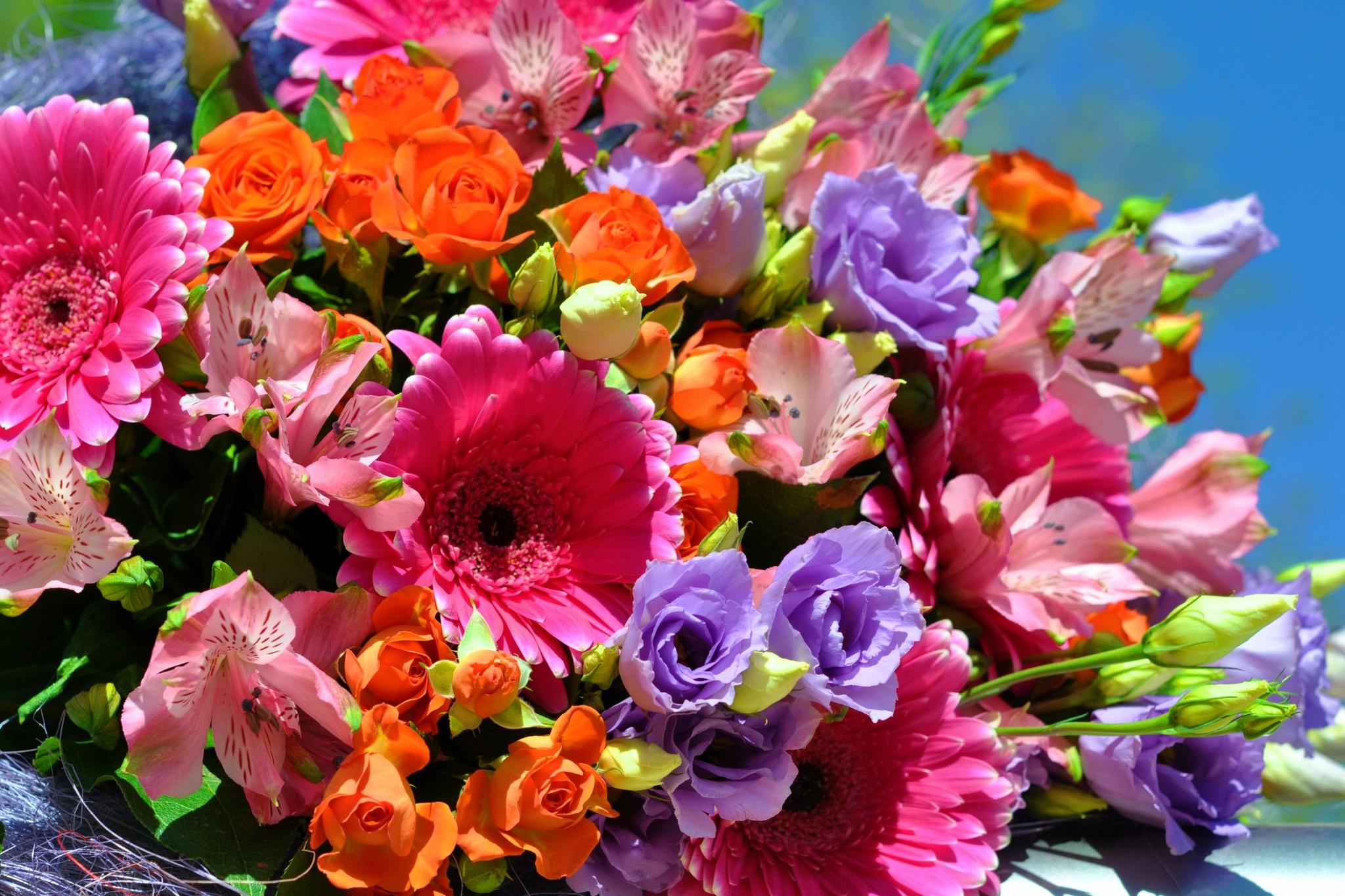 день картинки красивые яркие невеста